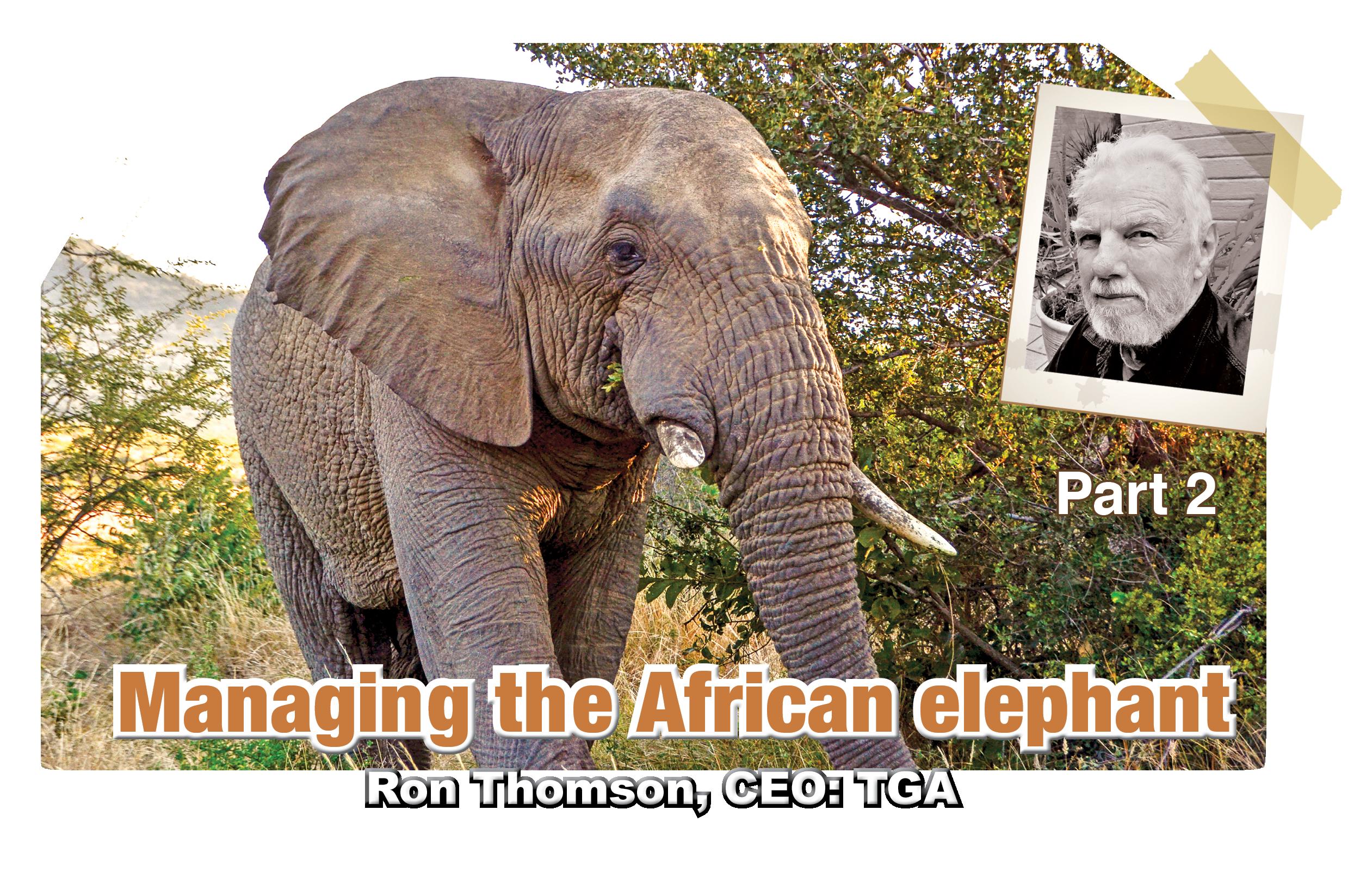 Managing The African Elephant Ron Thomson Ceo Tga Wildlife Digi Mag